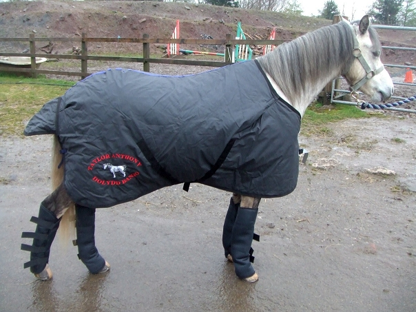 Embroidered Horse Rug
